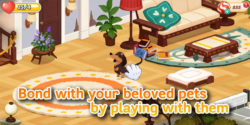 Hellopet House - Bond with your beloved pets by playing with them