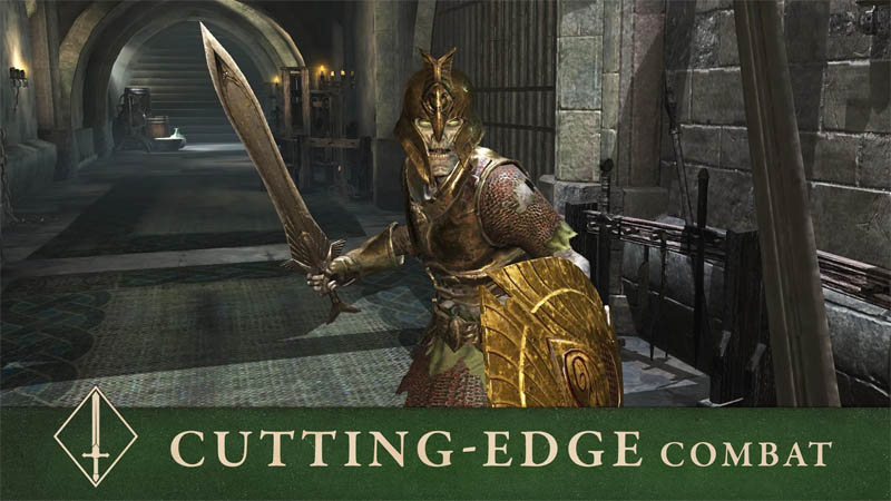 The Elder Scrolls Blades Asia - Cutting Edge Combat