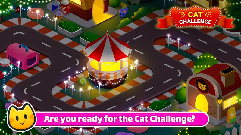 Chef Cat Ava - Are you ready for the Cat Challenge