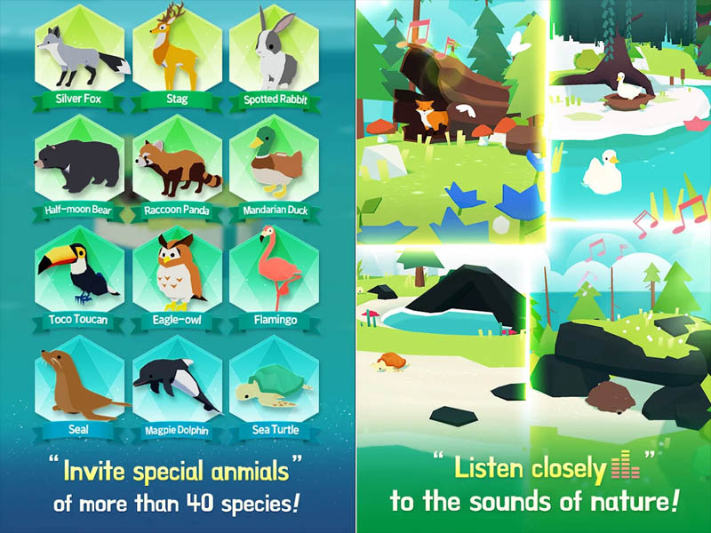 Forest Island - Invite special animals Listen closely